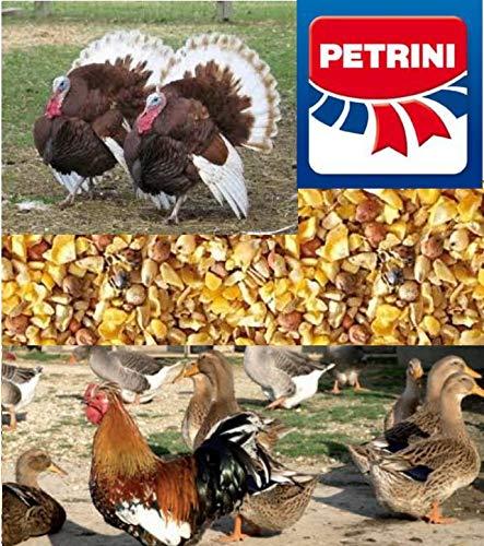 PETRINI MANGIME GRANAGLIA per Galline, POLLI, Tacchini, OCHE, GRANBECCHIME kg.25