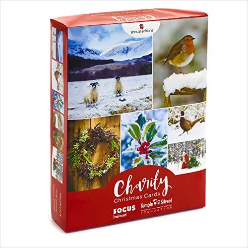 Weihnachtskarten, Multipack – 6 Designs, 24 Karten – Vielzahl von malerischen Winter-Fotografie-Designs einschließlich Rotkehlchen, Kranz und Weihnachtsmann