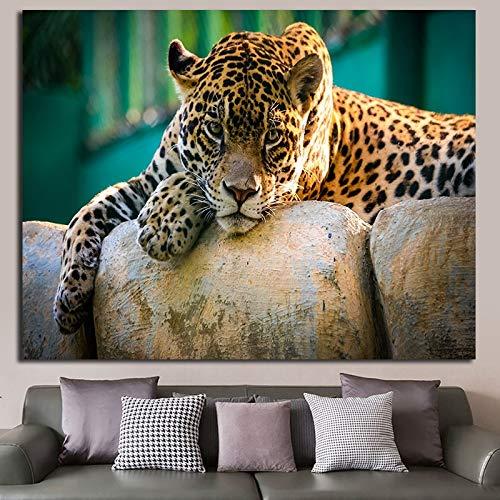 Kostenlose Leoparden Leinwand Ölgemälde für Wohnkultur Wandkunst Poster und Drucke Wohnzimmer Sofa rahmenlose Malerei 30cmX45cm