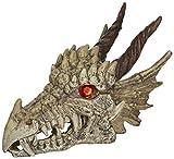 Penn-Plax RR1207 Dragon Skull Gazer Ornament