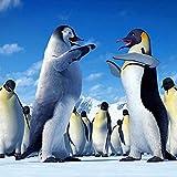 Puzzle 3000 Piezas Adultos Juego De Madera Rompecabezas Clásico Penguin-3000 Rompecabezas Juego de Rompecabezas y Juego Familiar Divertido Juego Familiar Puzzle