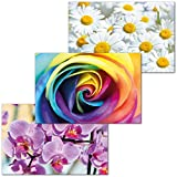 GREAT ART 3er Set XXL Poster – Blumen Power – Orchidee