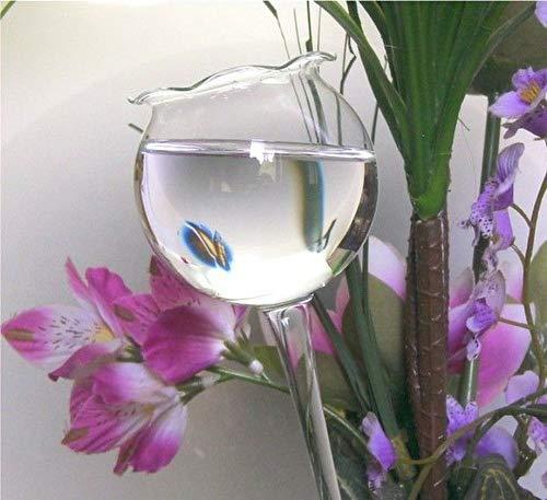 4 Stück Gießhilfe Durstkugeln Bewässerungshilfe Gießkugel Bewässerungskugel Qualität