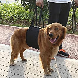 Zouminyy Black 4 Sizes Dog Lift And Assist Support Rehabilitation Harness With Handle For Canines Aid