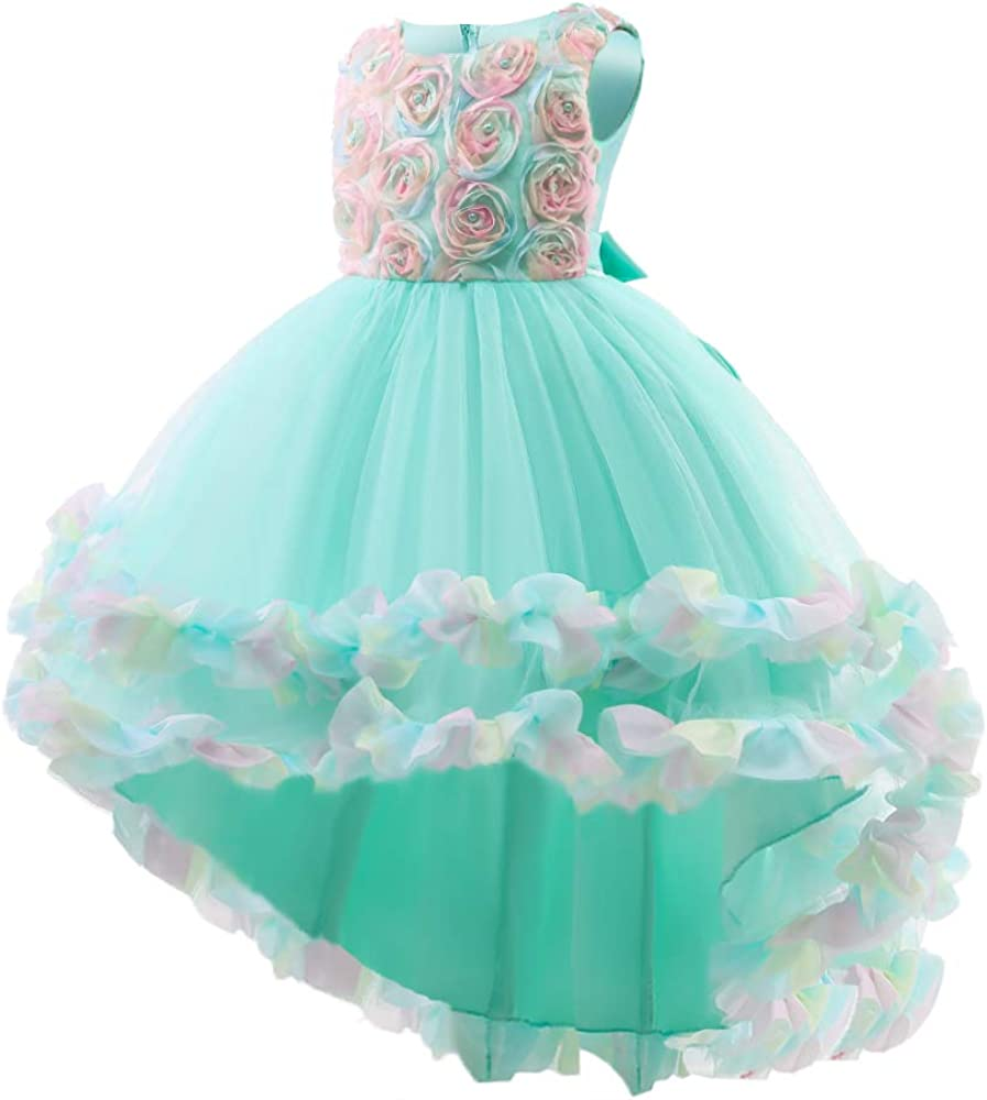 WZSYGDTC High-Low Skirts Wedding Bridesmaid Pageant Dress Flower Embroidered Bead Princess Dress