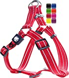 DDOXX Arnés Perro Step-In Nylon, Reflectante, Ajustable | Muchos Colores & Tamaños | para Perros Pequeño, Mediano y Grande | Accesorios Gato Cachorro | Rojo, XS