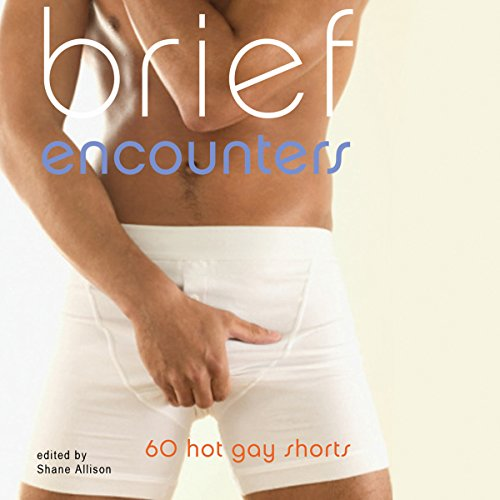 Brief Encounters: 69 Hot Gay Shorts audiobook cover art