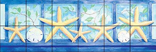 Murale di piastrelle di ceramica - Starfish poppa Border - di Paul Brent - Cucina splashback/doccia Bagno