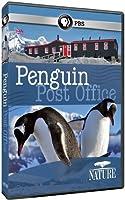 Nature: Penguin Post Office [DVD] [Import]