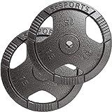 ScSPORTS Hantelscheiben mit Griffen 2 x 15 kg Gewichtsscheiben 30 mm Gusseisen Hammerschlag Grau