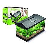 Aquael Leddy 60 Aquarium Équipé 60 x 30 x 30 cm 54 L