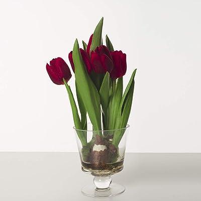Express Flor-Tulipanes Artificiales con jarrón de Vidrio