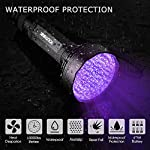 YOUTHINK 100LEDs Flashlight Pet/Dogs/Cats Urine Detector UV Black light to Check Stains, Scorpions, Currency Authenticate for Indoor&Outdoor Use 395 nm Ultraviolet Flashlight 12