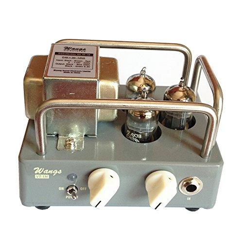 Biyang Wangs VT-1H Electric Guitar Micro Amplifier All Tube Amp Head