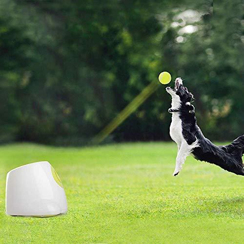PETAMANIM Pet Wurfmaschine automatische Pitching Maschine Haustier interaktive Spielzeug Haustier liefert Tennis (mit Kleinen Ball) Haustier Selbsthilfe Unterhaltung