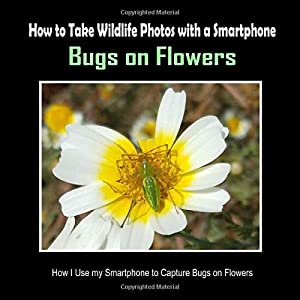 Bugs on Flowers: How I Use My Smartphone to Capture Bugs on Flowers (How to Take Wildlife Photos with a Smartphone)