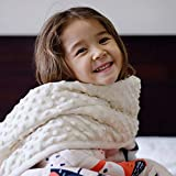 ZonLi Plush Weighted Blanket 5 lbs(36''x48'', Owl), Twin Size Weighted Blanket for Kids, Soft Fleece Heavy Blanket with Glass Beads