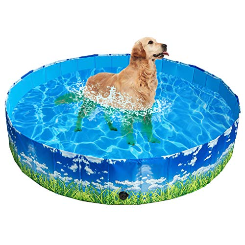 BINGPET Foldable Dog Swimming Pool - Outdoor Portable PP Pet Puppy Collapsible Pool Bathing Tub for Dogs and Kids, Large for Whole Family