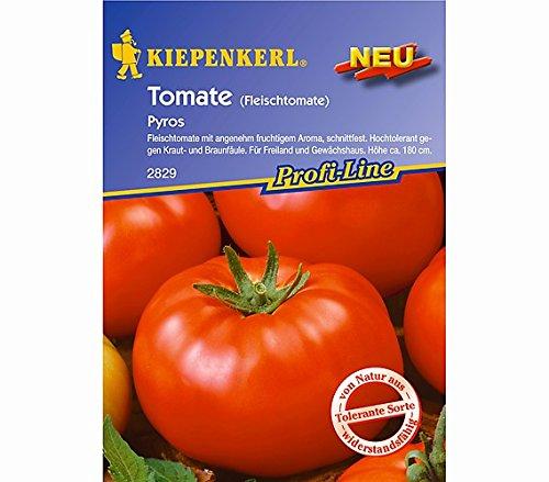 NebelungKiepenkerl Kiepenkerl Saatgut Tomate 'Pyros'