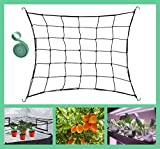 JUCHI Trellis Netting 3X3FT with 6 Hooks for Grow Tents, Flexible Elastic Trellis Netting Fits for 4x4FT and 5x5FT, Garden Netting with 78 Inch Garden Ties for Fruits, Flowers, Scrog