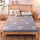 zyl Colchón de Suelo de Tatami Plegable colchón Grueso Acolchado Suave Anti-decúbito futón para Dormir para Dormitorio F 200x220cm