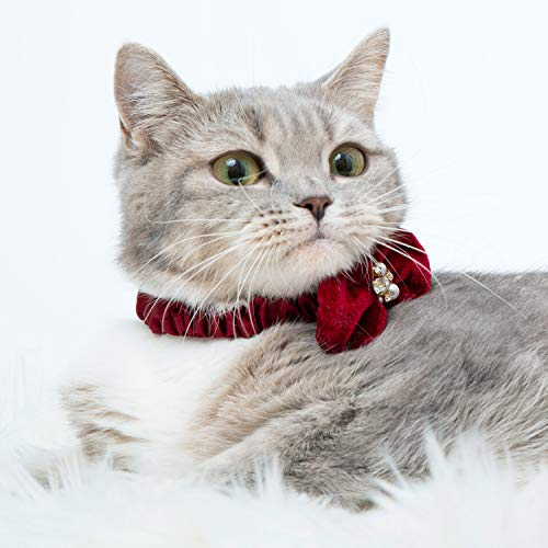 Blueberry Pet Pack of 2 Cat Collars, Glamorous Elastic Ribbon Breakaway Cat Collar with Velvet Bows and Pearl Decorations, Neck 9'-10.5'