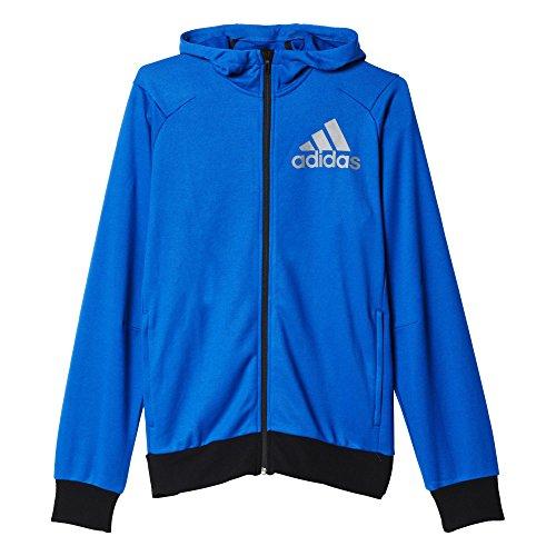 adidas Herren Sweatshirt PRIME HOODIE, Mehrfarbig (Blue/EQTAZU), M