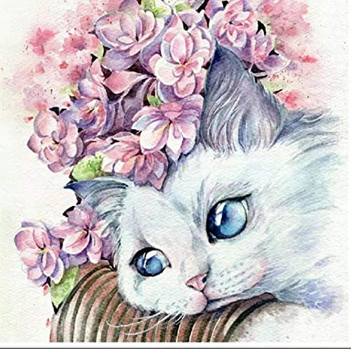 MSRDBBDIY 5D Diamond Painting Numbering Kit Animal Cute Kitten Painting Cross Stitch Full Diamond Crystal Rhinestone Mosaic Embroidery Art Craft Home Wall Decoration Gift