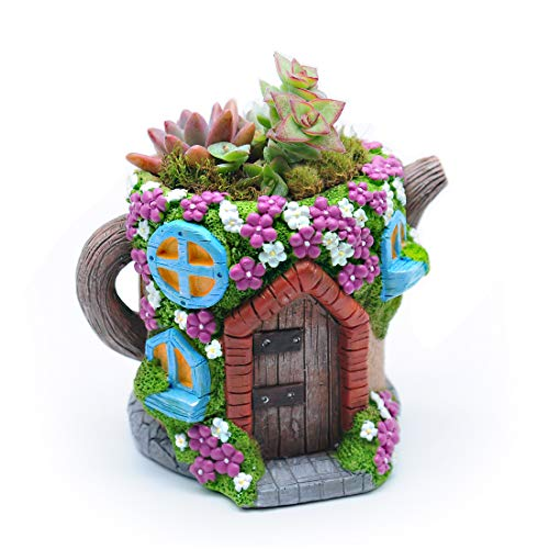Magwen Succulent Plant Cactus Container, Miniature Fairy Garden Decoration Flower Pot, Kettle-Shaped Bonsai Pot (Brown)