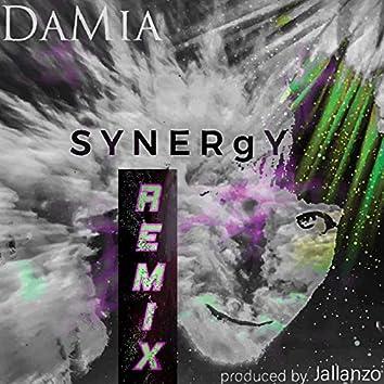Synergy (Remix)