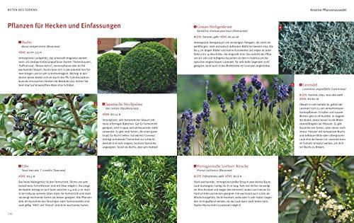 Mediterrane Gärten gestalten - 8