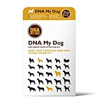 DNA MY Dog Canine Breed Identification Test by DNA My Dog Breed Identification Kit
