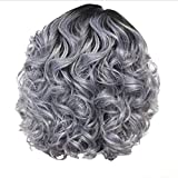 BXzhiri Women's Short Curly Hair Wigs Grey Human Hair Lace Wigs European and American Women's Wigs Styling Cool Wig