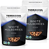 Terrasoul Superfoods Organic Sun-dried White Mulberries, 2 Lbs (2 Pack) - Low Glycemic | Naturally Sweet | Rich in Vitamin C
