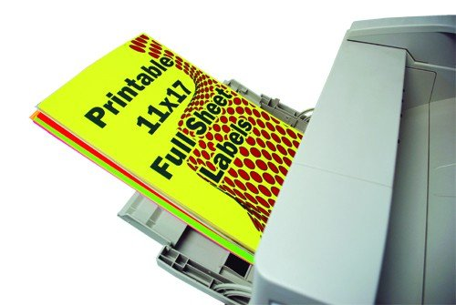 11x17 Peel and Stick Labels, Pack of 10, White (552080)