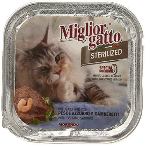 MIGLIOR GATTO Set 32 Stérilisé 100 gr Humide Poisson à la crevette Nourriture Pour chats
