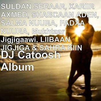 DJ Catoosh Album