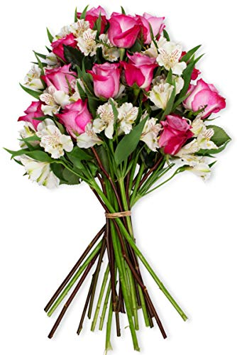 Benchmark Bouquets Delightful Roses and Alstroemeria, No Vase (Fresh Cut Flowers)