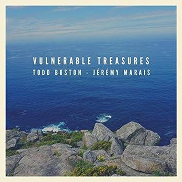Vulnerable Treasures