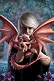 Stokes, Anne - Dragonkin - Fantasy Poster Adler Flügel