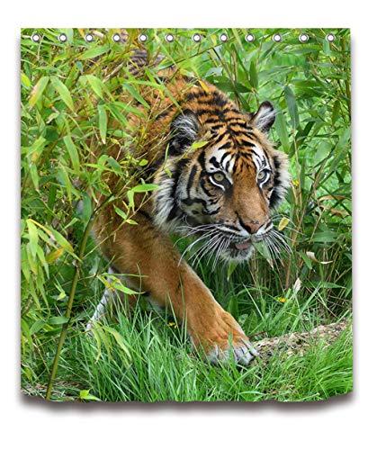 ZZZdz Wilder Tiger in gras. Douchegordijn. 180 x 180 cm. 12 vrije haken. meubeldecoratie. 3D Hd-druk. Badkameraccessoires. Achtergrond.