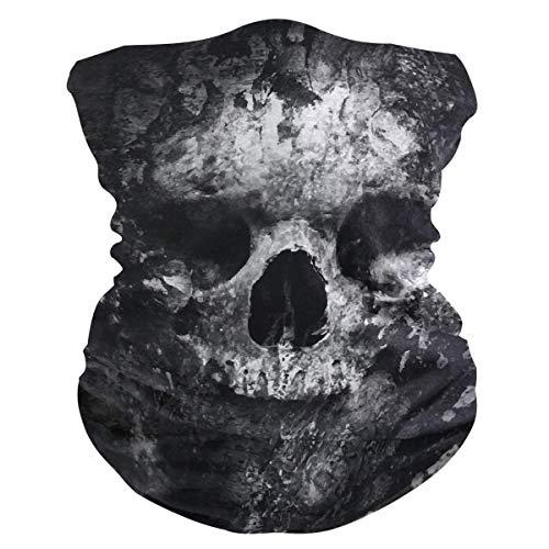 RP Amazing Magic Scarf,Skull Ark Paint Art Schweißband, Neuheit Hals Sturmhauben Für Motorradfahren Skifischen,25x50cm