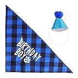 PRETYZOOM Sombrero de Fiesta para Perros Y Bandana Lindos Sombreros de Cono para Mascotas con Pompón para Perros Gatos Fiestas de Cumpleaños (Azul)