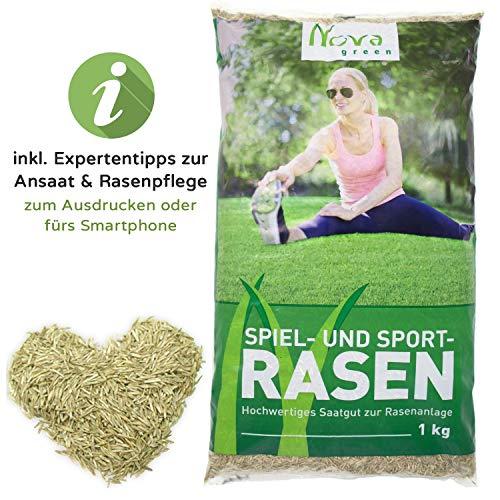 Premium Rasensamen schnellkeimend für Sommer Ansaat 1kg = 30-40m² | dürreresistent, robust, tiefgrün | Ideal sowohl für Neuansaat und Nachsaat | Rasensaat Grassamen