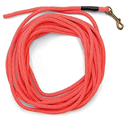 SportDOG Brand Orange Check Cord - 30 Feet Long - Strong but Lightweight Training Tool - Highly Visible and Floats by SportDOG Brand