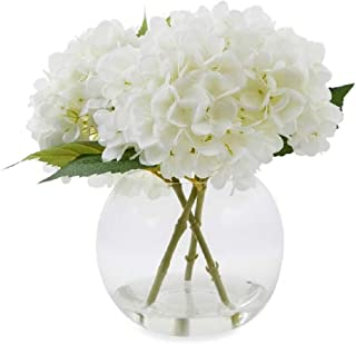 Laura Ashley [ローラアシュレイ] ガラスドームの花瓶 エレガントなホワイト・ハイドランジア 紫陽花 [並行輸入品]