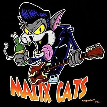 El gato rockabilly