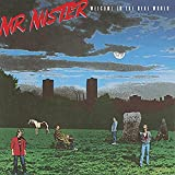 Welcome to the Real World von Mr. Mister