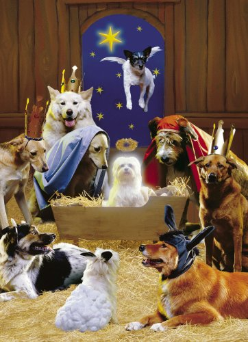 Avanti Christmas Cards, The 12 Dogs of Christmas, 10-Count