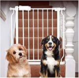 Barrera de Seguridad de Niños para Puertas y Escal Escalera y Pared del Pasillo Montada Dual Lock Puerta del bebé en Instalación Simple Ajustable Adicional Escalera Hijo Seguro Seguridad de la Puerta